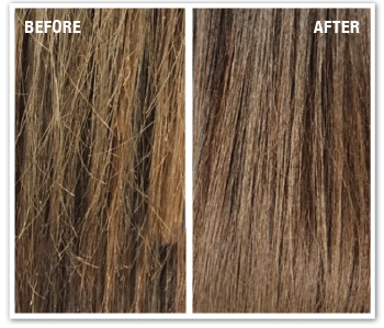 Split End Correction Treatment Michael Anthony Hair